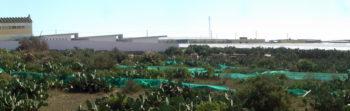 Aulario Llanos de Marín. LosdelDesierto